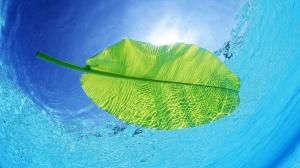 Cara menjernihkan air|cara menyaring air|cara membuat saringan air